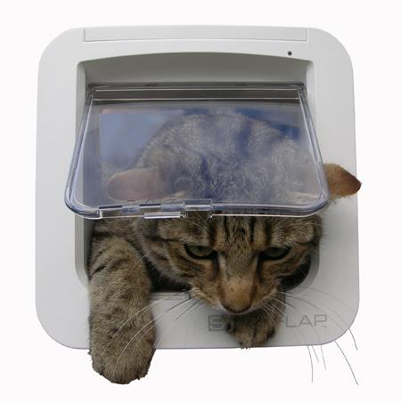 Find Your Microchip Cat Flap