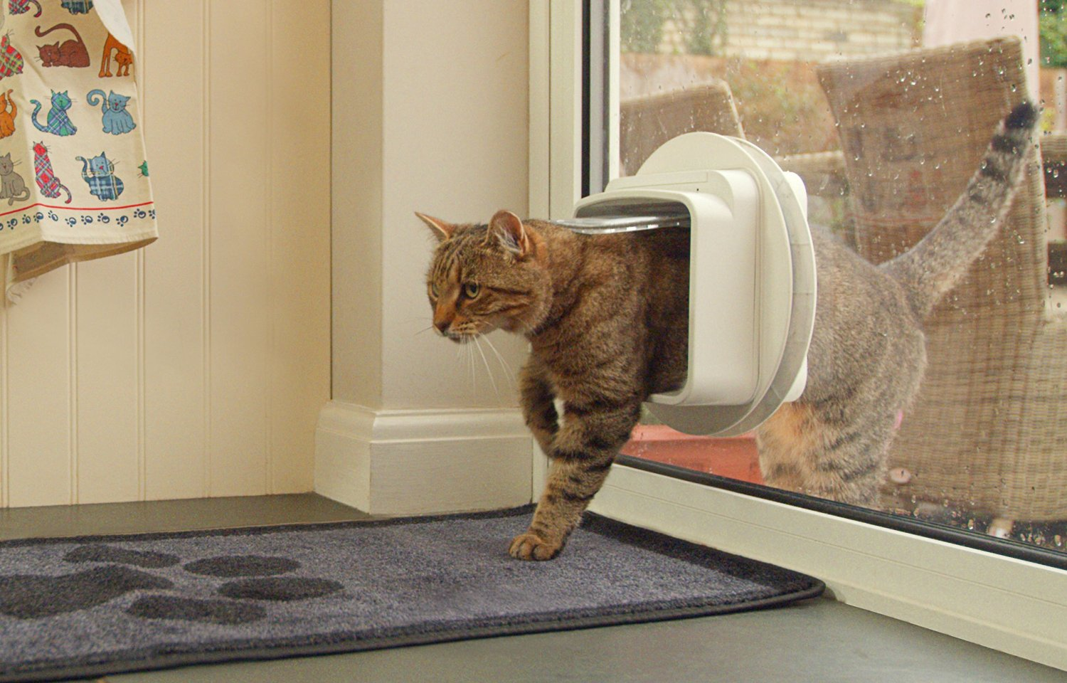 Cat flap installation in glass door top cat flaps cat flap installation in glass door planetlyrics Gallery