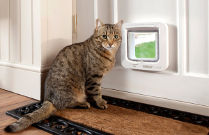 Sureflap Microchip Cat Flap white door