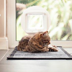 Sureflap Dualscan Cat Flap